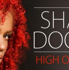 Sharon Doorson - High On Your Love_cover_0
