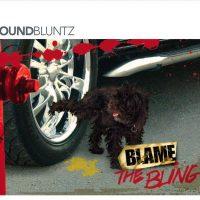 SoundBluntz Blame the Bling album cover